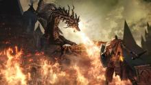 A medievel themed game would be remiss to omit dragon lore as part of its storyline. In Dark Souls, dragons are a large part of the lore, and special rewards are usually found by chopping off their tails...