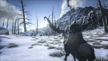 Gorgeous winter scenery in Lost Ark