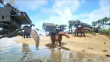 A recent development in the game is the ability to build on platforms atop the saddles of larger dinosaurs.