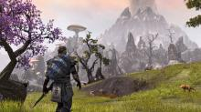 You can explore a large open world map in Elder Scrolls Online