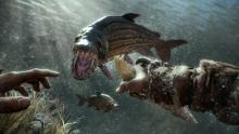 This fish kind of looks like a dinosaur?