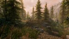 Skyrim's serene atmosphere.