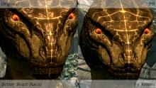 Example Showing an Argonian Face Before and After Mod