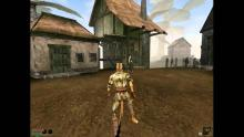 Morrowind was the turning point for Elder Scrolls and a huge hit: it had 3D graphics, a rich, huge and detailed world and an engaging story.