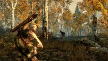 Skyrim is arguably the most popular single player RPG to date.