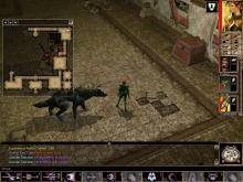 The player is inside a dungeon in the first Neverwinter Nights, along with Henchmen Daelan Redtiger