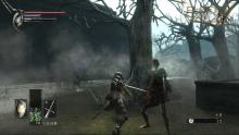 combat in Demon's Souls