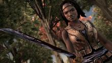 Telltale Games allows the Player to experience the secret life of Michonne