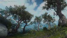 Flora Overhaul adds numerous different forms of diverse-looking plantlife to Skyrim's wilderness.
