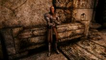 The Armonizer mod brings an additional 34 armours to Skyrim's armory.