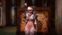 This mod brings a multitude of armours from the gameworld of Tera, a Korean MMORPG.