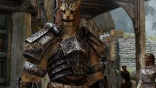 Join Skyrim's hero's guild - the Companions.