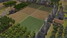 Larger fields get larger yields, just make sure you have enough workers.