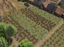 4x14 crop fields side by side.