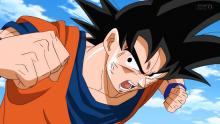 Goku in a fight