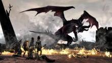 Flemeth dragon from Dragon Age 2