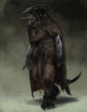 A lone Dragonborn Sorcerer