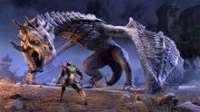 Defeat monsters and complete quests in Elder Scrolls Online.