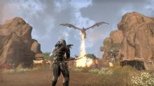 Elsweyr brings the excitement with heated combat.
