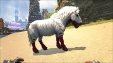 An Equus is the essential mount for getting to and from places with speed