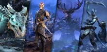 There are ten playable races in The Elder Scrolls Online, three for each of the Alliances, the Imperials (Unbound to an Alliance), as well as other non-playable races, such as the Maormer.