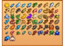 All of the available fish to catch in Stardew.