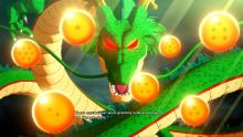 Shenron ready to grant a wish