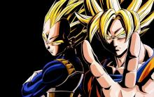 Goku and Vegeta side by side
