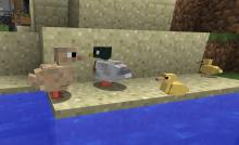 Experience some adorable new friends like these ducklings in the Exotic Bird mod!