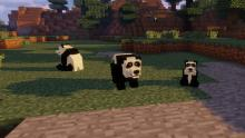 The pandas you're accustomed to in the current version of Minecraft undergo a makeover in the Mo' Creatures mod.