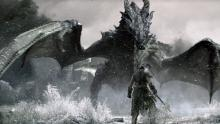 The dragonborn about to face one of the beasts.