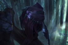 Talon lies in wait for his target amongst the treetops.