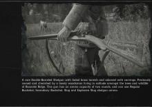 Rare Shotgun Info