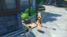 Ningguang with a stray dog