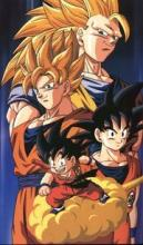 Some of Goku's different stages throughout the series.
