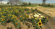 The tank and the sunflower, a children's tale