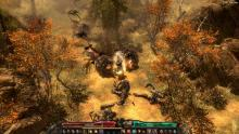 Close up look at  Grim Dawn game play
