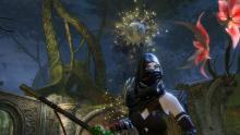Guild Wars 2 Rogue
