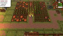 A player visits their farm in the evening to survey their crops.