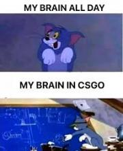 Somehow I can be a moron all day and yet reach 5head status in CSGO, I think