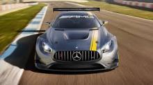 A Mercedes in it's natural habitat.