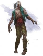 A gross looking zombie that the cleric will hopefully blast to death.