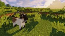 Animania offers new types of animals perfect for your farm!