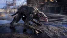 This is yet another creature you can come across in  your travels of Metro:Exodus