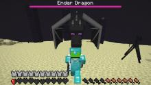 You'll need regeneration if you approach the Ender Dragon