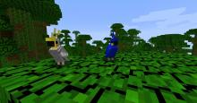 Two parrots sit in a jungle biome.