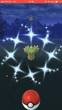 If you're lucky, you may encounter a shiny Misdreavus the next time one spawns!