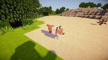 This realistic Texture Pack adds new colors and designs to blocks and mobs to replicate real-world images for a new level of exciting gameplay.