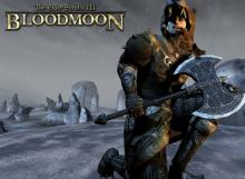 A skaal hunter from Morrowind's 'Bloodmoon' DLC—talk to them if you have a werewolf problem...
