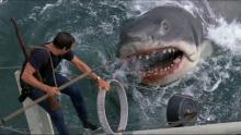 Big Bruce chases down Roy Scheider.